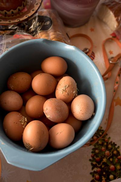oman kanalan munat