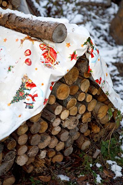 Halkopinoa koristaa jo joulu.