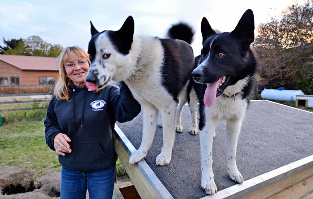 Palveluskoiria kasvattava Carrie Hunt