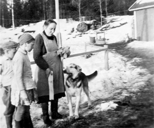 Seija Aaltonen