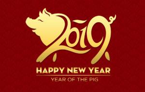 Kiinalainen Horoskooppi Sian Vuosi 2021