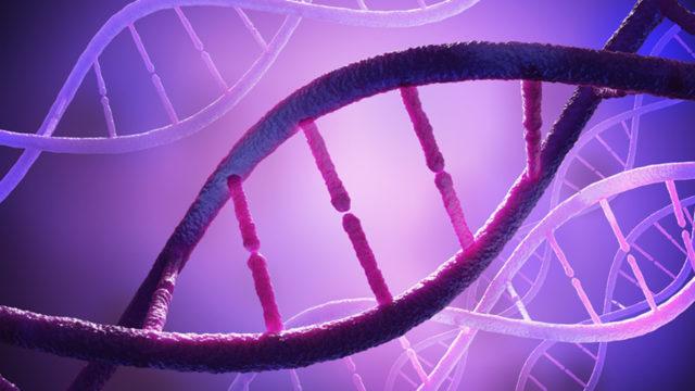 Kannattaako geenitesti tehdä varmuuden vuoksi?
