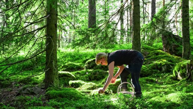 Mikä tekee suomalaiset onnelliseksi? Sitä pohdimme, vastaa kyselyyn.