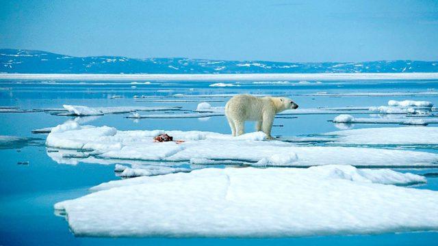 Totuus ilmastonmuutoksesta