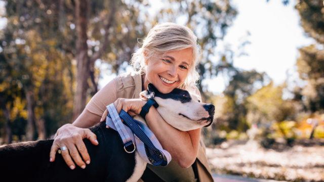 Ruotsalaistutkimuksen mukaan koiranomistajilla on pienempi todennäköisyys kuolla sydän- ja verisuonitautiin kuin muilla ihmisillä.