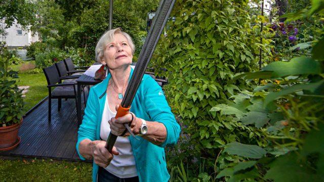 Anneli Sjöholm