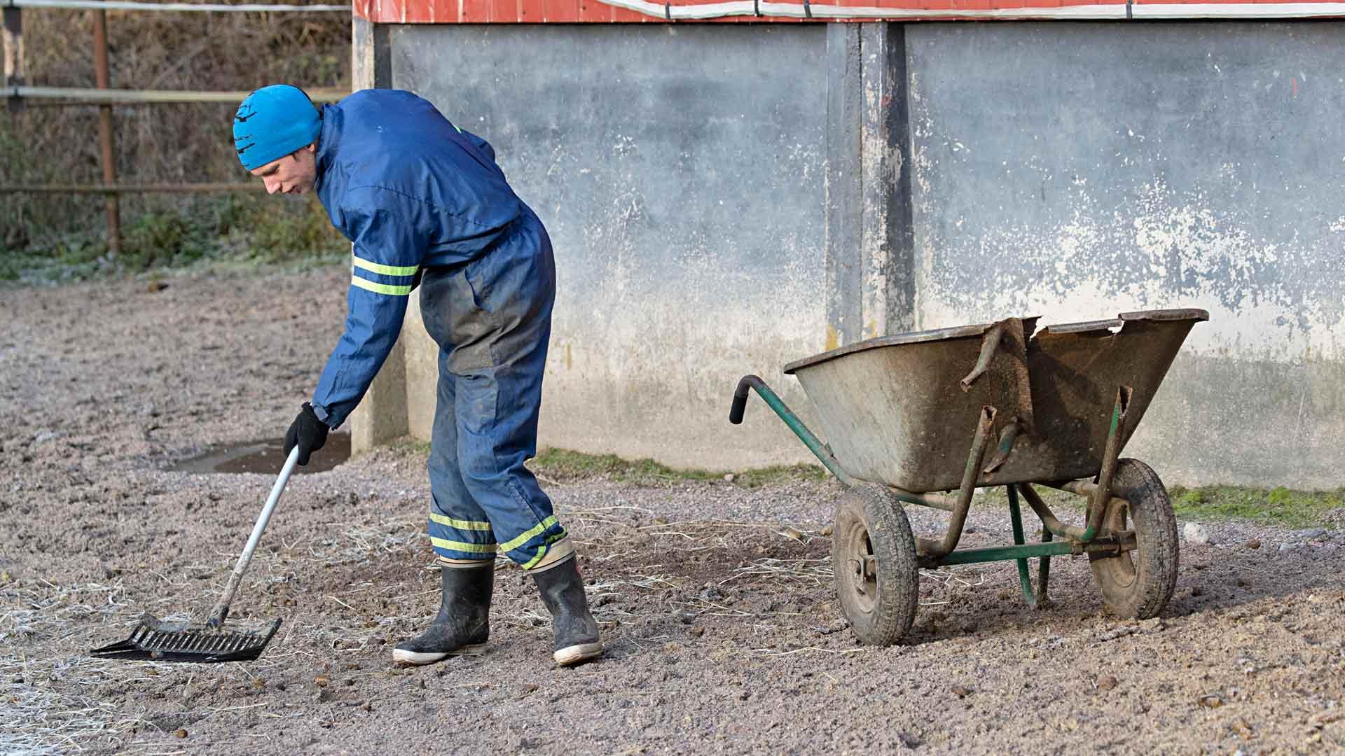 Antti Salolla on tärkeä tehtävä: hän on hoitaa Keilan tarhasta kakat pois.