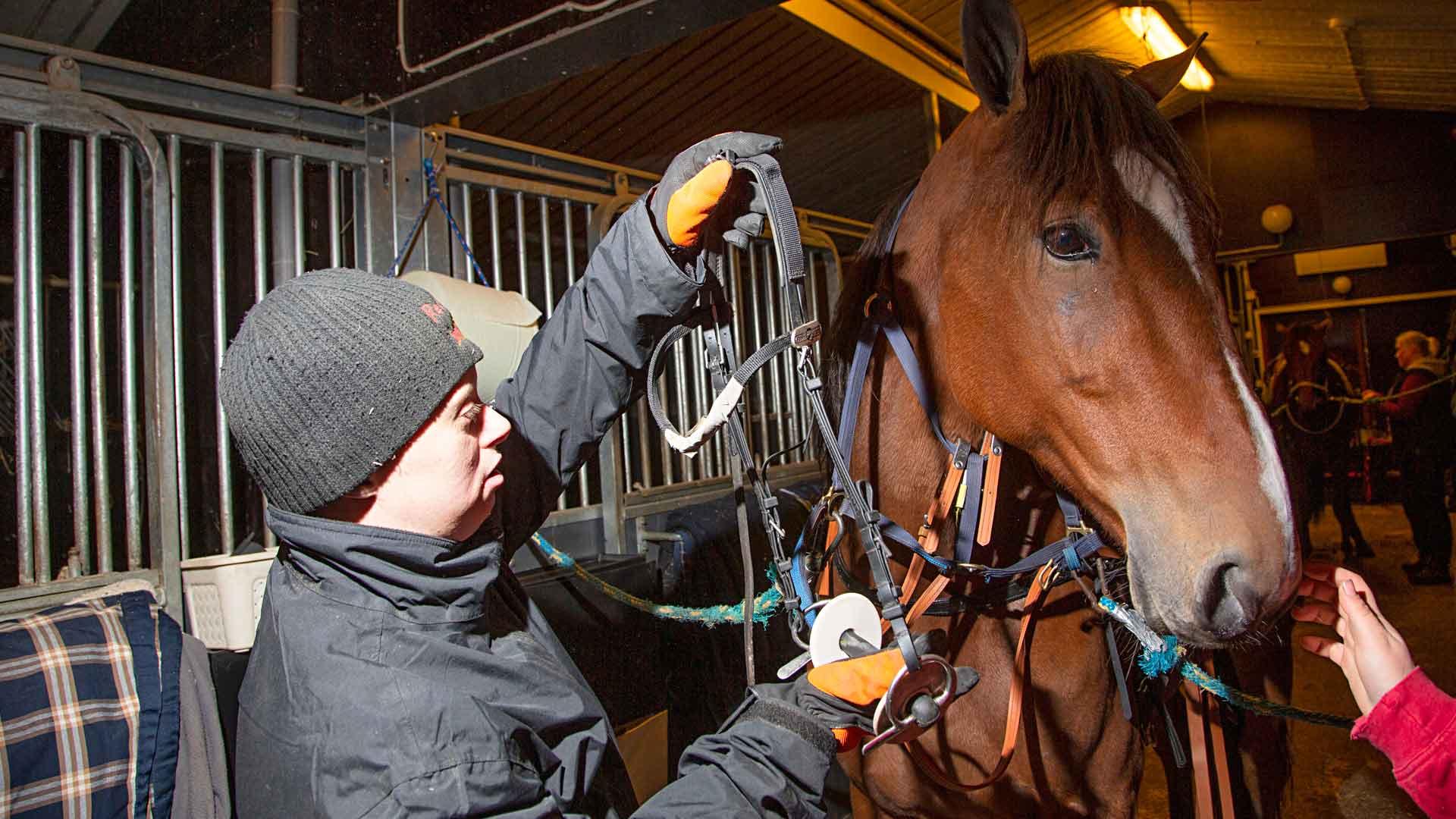 Päivätoiminnan asiakkaat auttavat tallitöissä ja hoitavat hevosia hevosammattilaisten ohjeiden mukaan. Miska lämmittää treeniin menevän hevosen kuolaimia.