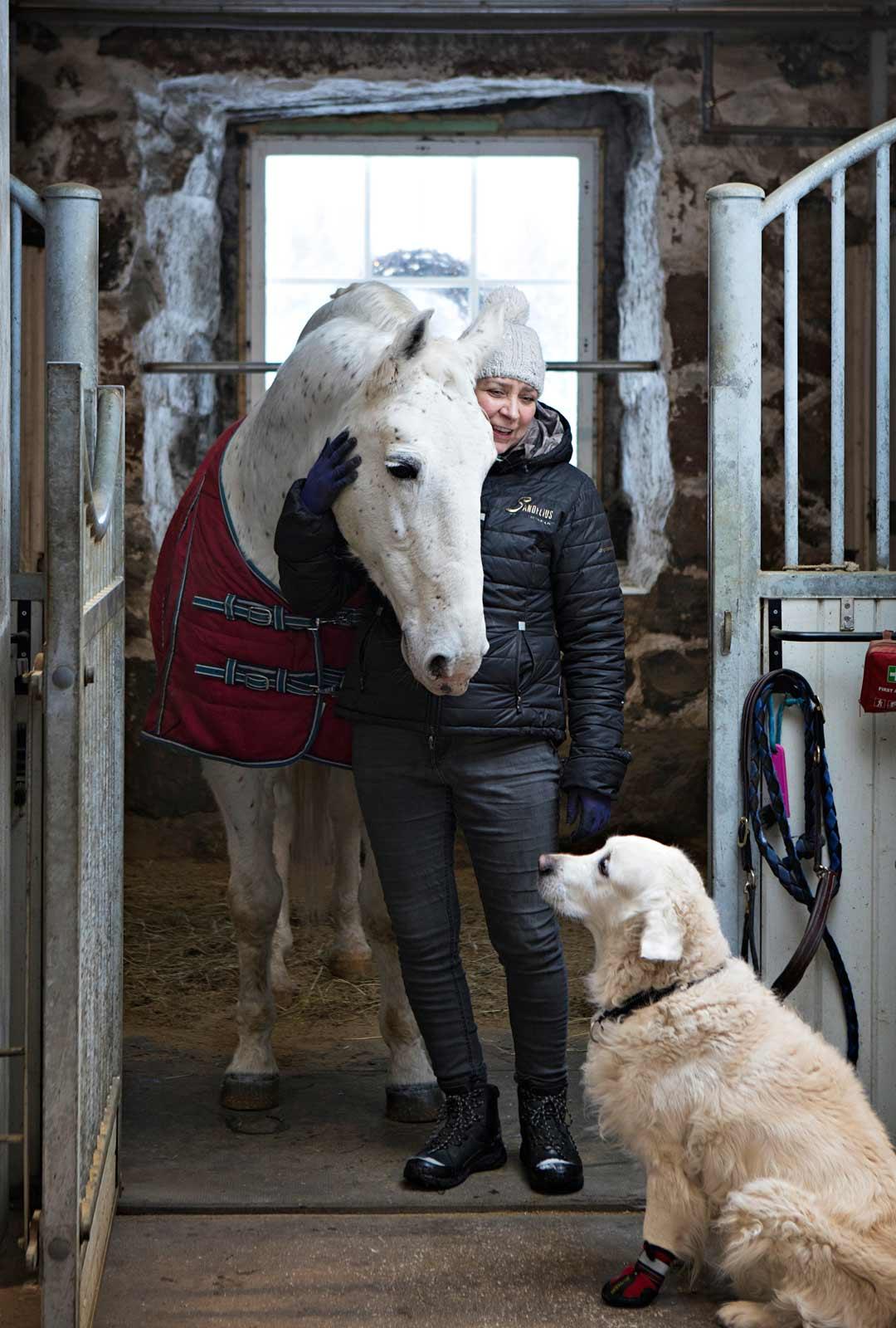 Eläimet, kuten lipizza Sandor ja kultainennoutaja Salino, ovat Carolinalle kaikki kaikessa. Jouluisin myös eläimet saavat lahjoja