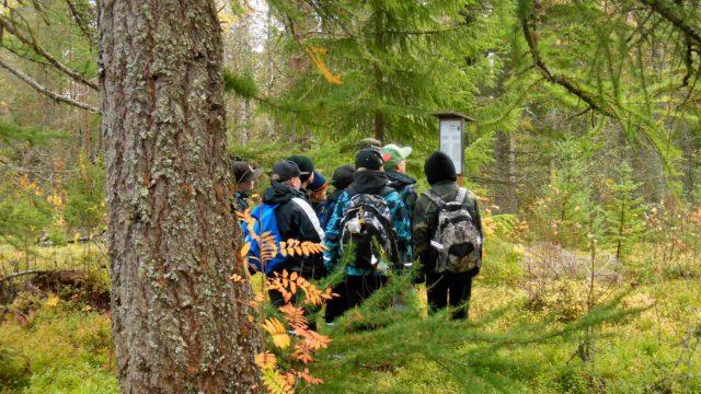 Koululaiset Jauhovaaran puulajipuistossa.