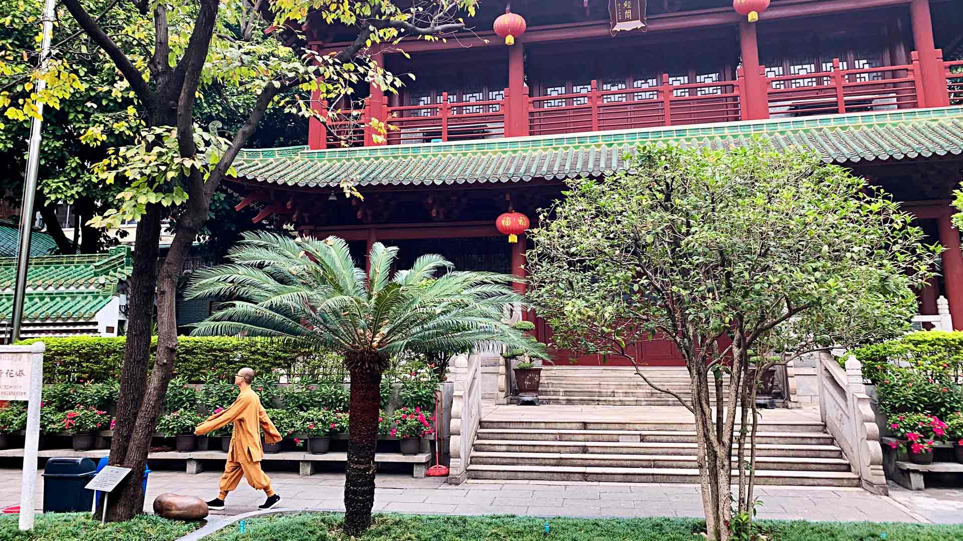 Liu Rongin temppelin vehreällä alueella voi seurata oranssipukuisia buddhalaismunkkeja.