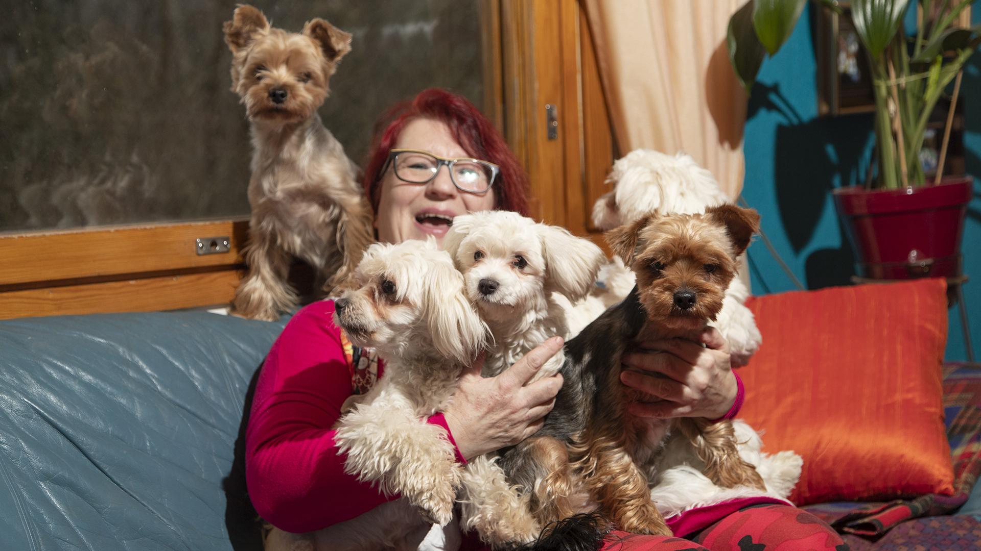 Eevan viisi koiraa hyötyvät myös emäntänsä säästäväisyydestä.