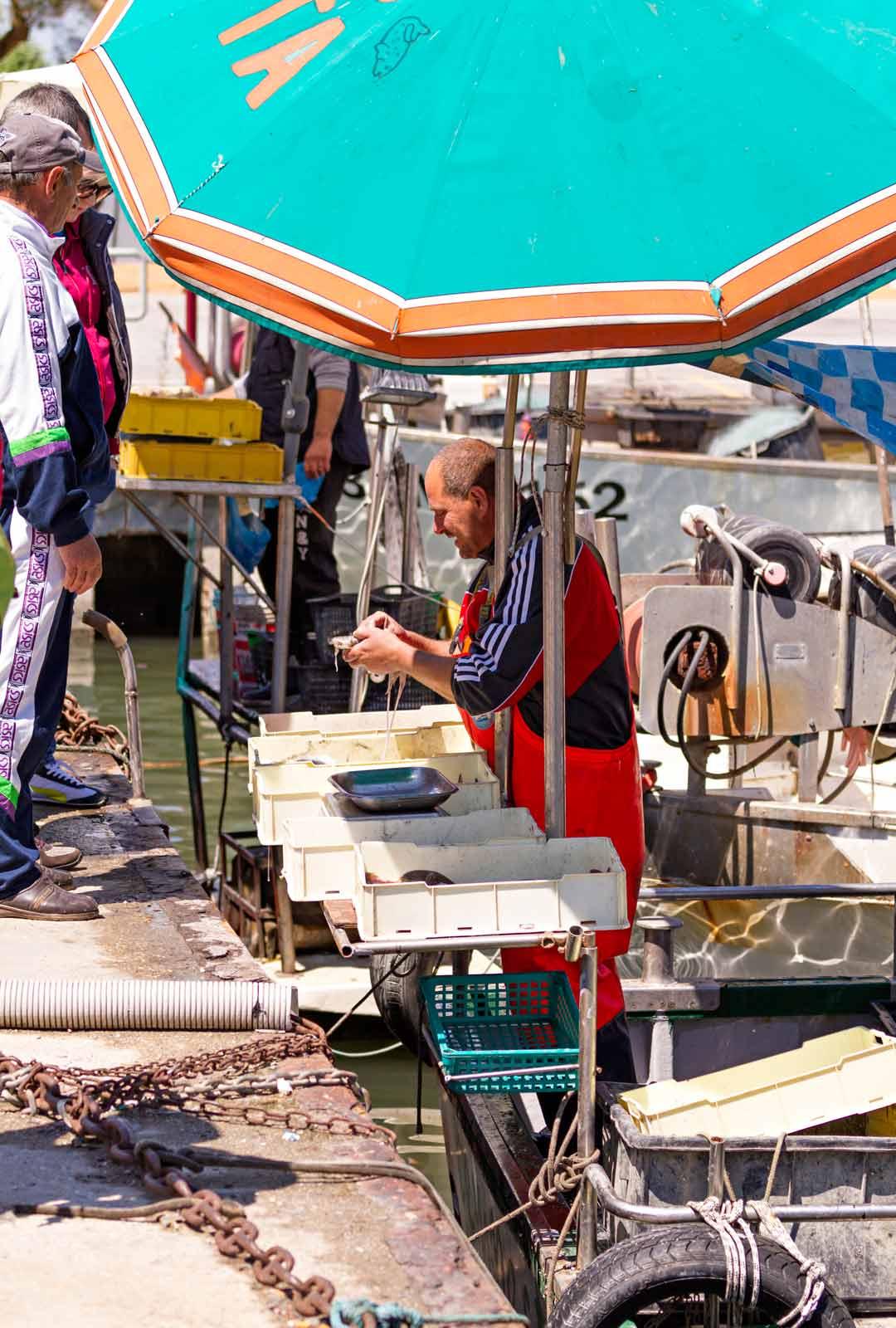 Cattolican noin 17 000 asukkaan kalastajakylässä kannattaa perinteisen italialaisen pizzan ohella nauttia maankuuluista merenantimista.