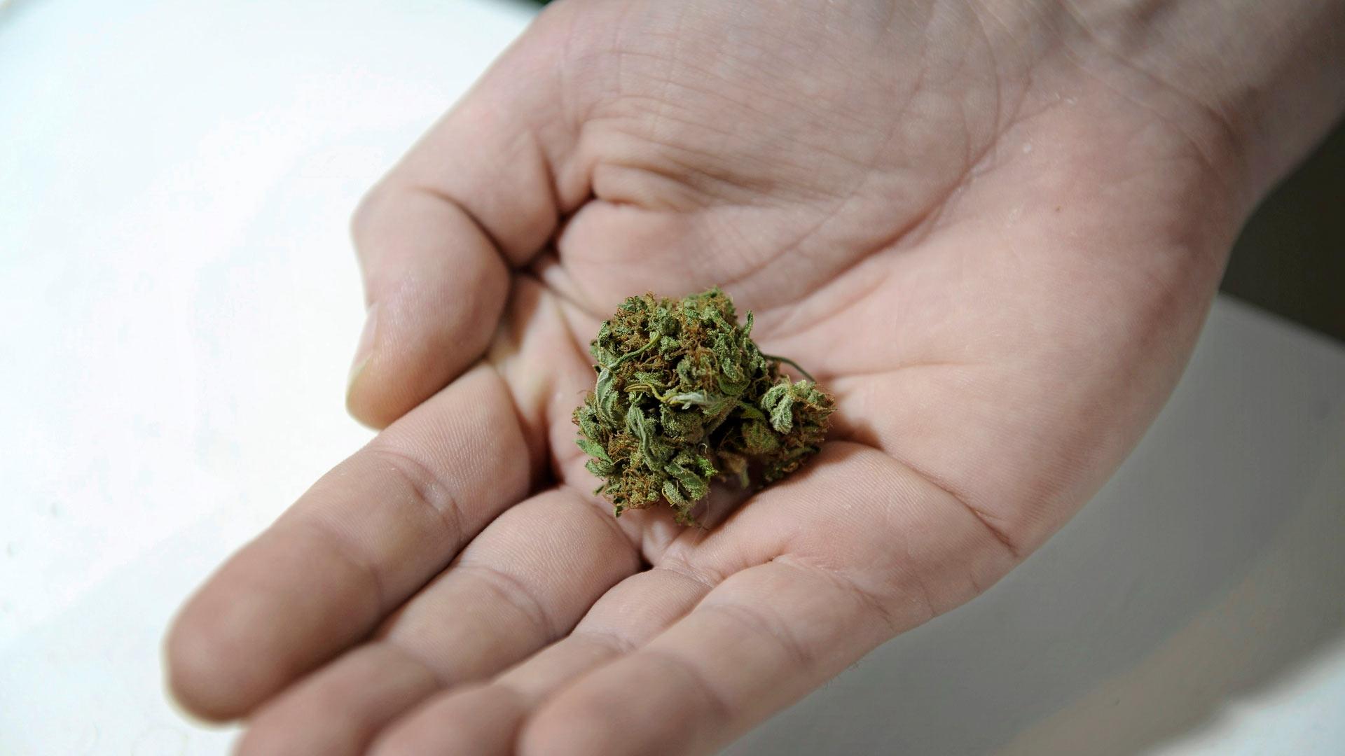 Kannabiskeskustelussa unohtuu usein, että laillinenkin huume olisi lapsille kaikkea muuta kuin turvallinen päihde.