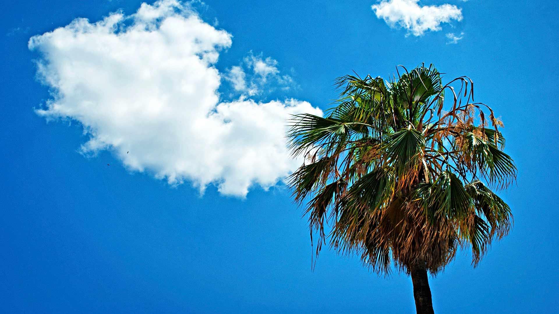 Vuorotteluvapaa vei toisiin maisemiin. Espanjan auringossa Markku Aalto on analysoinut, miten elämä pitäisi elää toisin. Kuva:Miia Marjamäki
