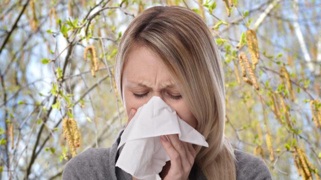 Allergia ja monet eri infektiot aiheuttavat hengitystieoireita, kuten nuhaa. Aina ei ole helppoa erottaa, mistä oire johtuu.