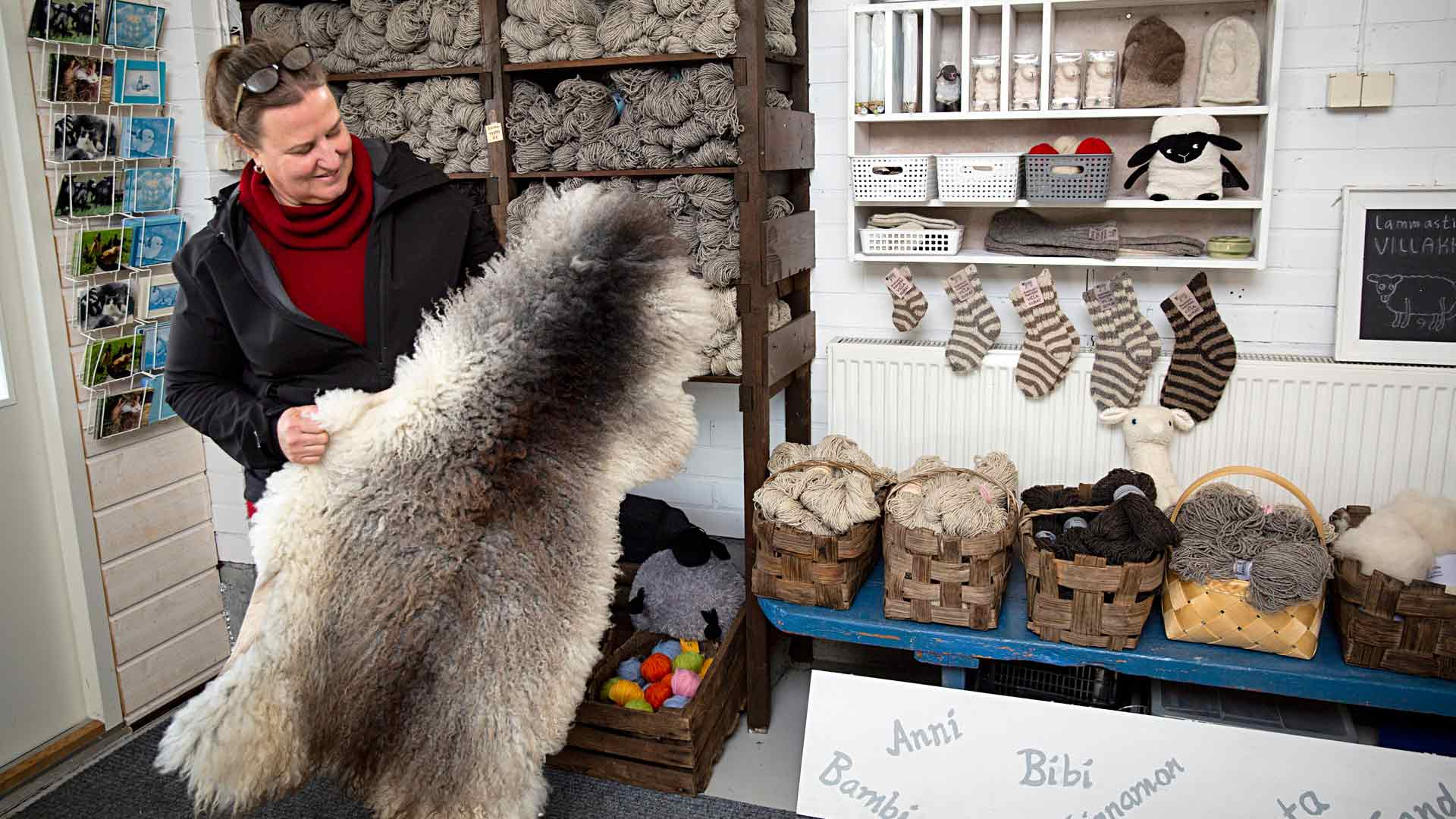 Kainuunharmaksen villa on erityisen pehmeää ja niiden taljoja Kujansuukin myy ahkerasti.