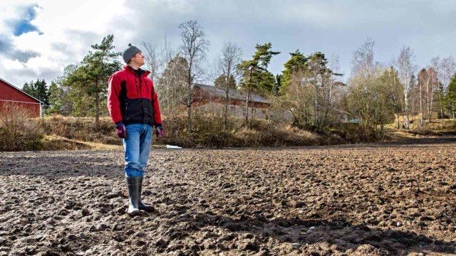 Vielä perniöläisellä pellolla on upottavan pehmeää, mutta kevät kuivattaa multaa vauhdilla, ja pian edessä on Laurin Niittysen kiireisin työsesonki.