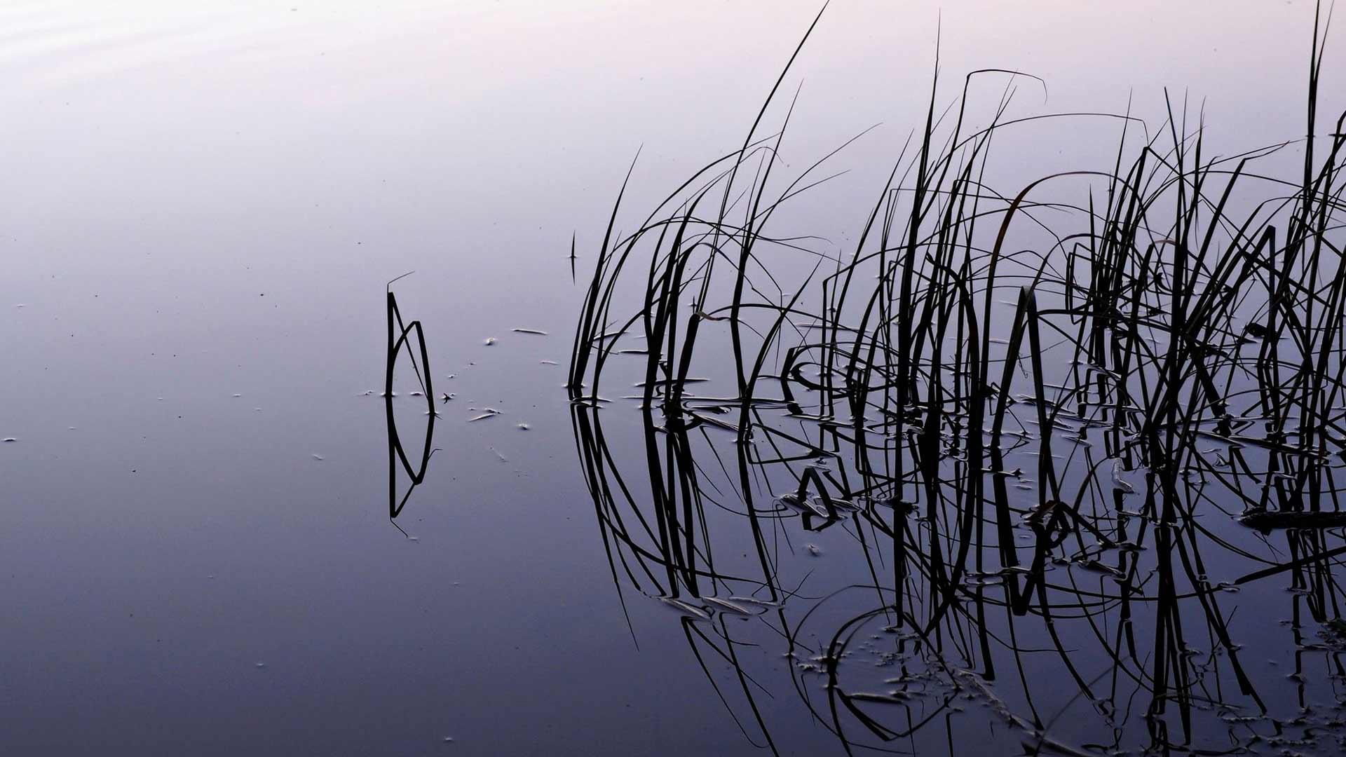 Suomesta löytyy paljon kalapaikkoja.
