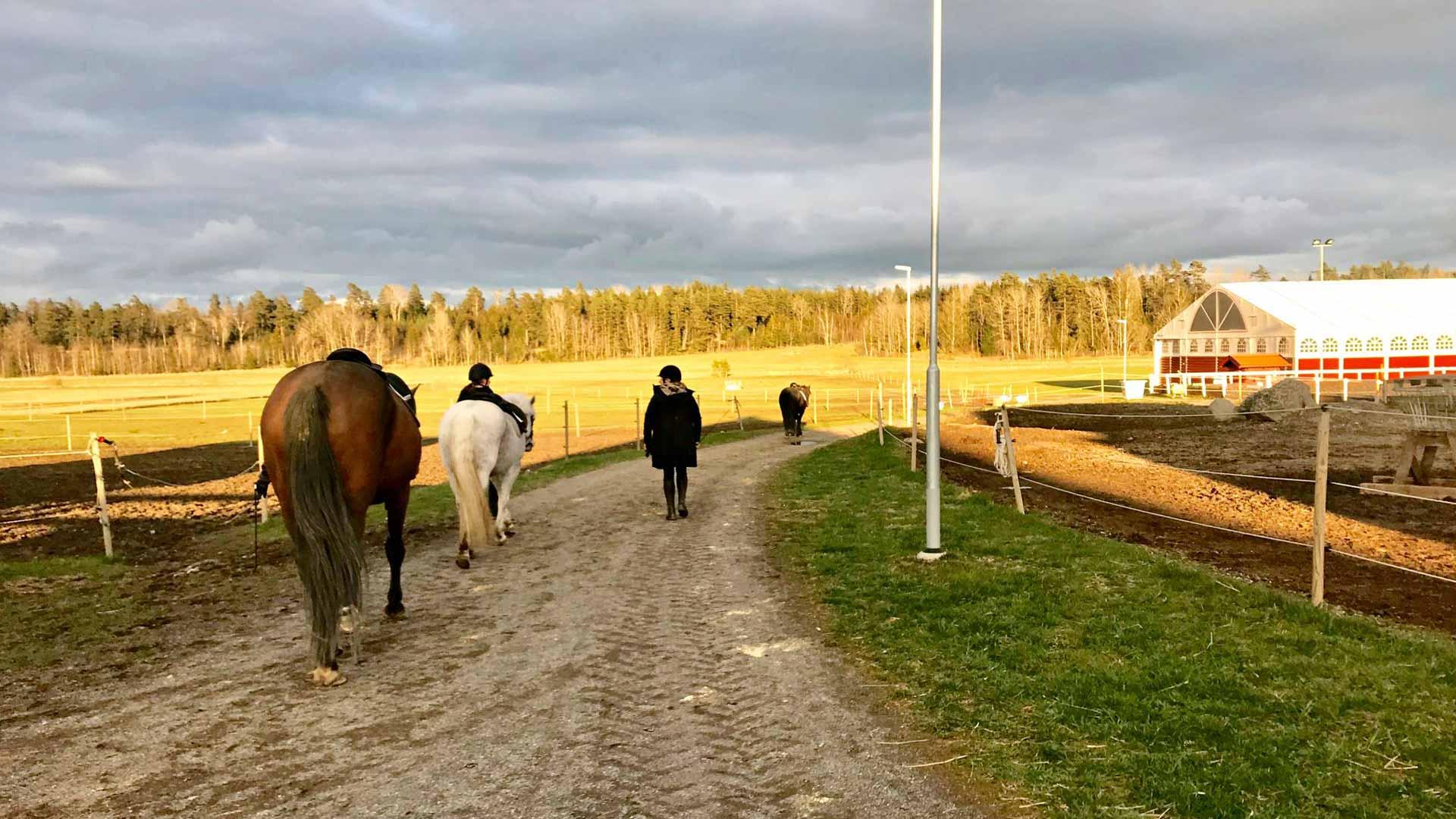 Ratsastuskoulut ovat jatkaneet toimintaansa, kunhan ratsukot pysyvät parin metrin päässä toisistaan.