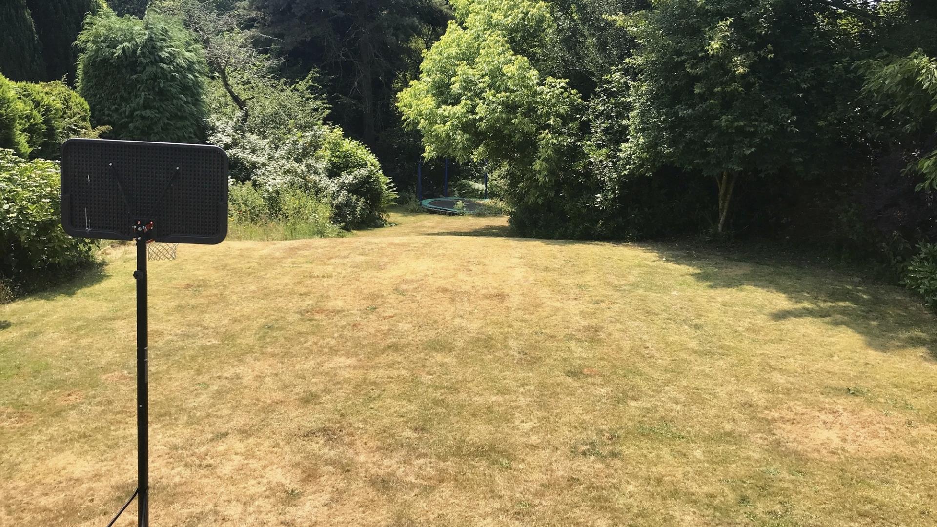 Lyhyt nurmikko kärärhtää helposti ruskeaksi.
