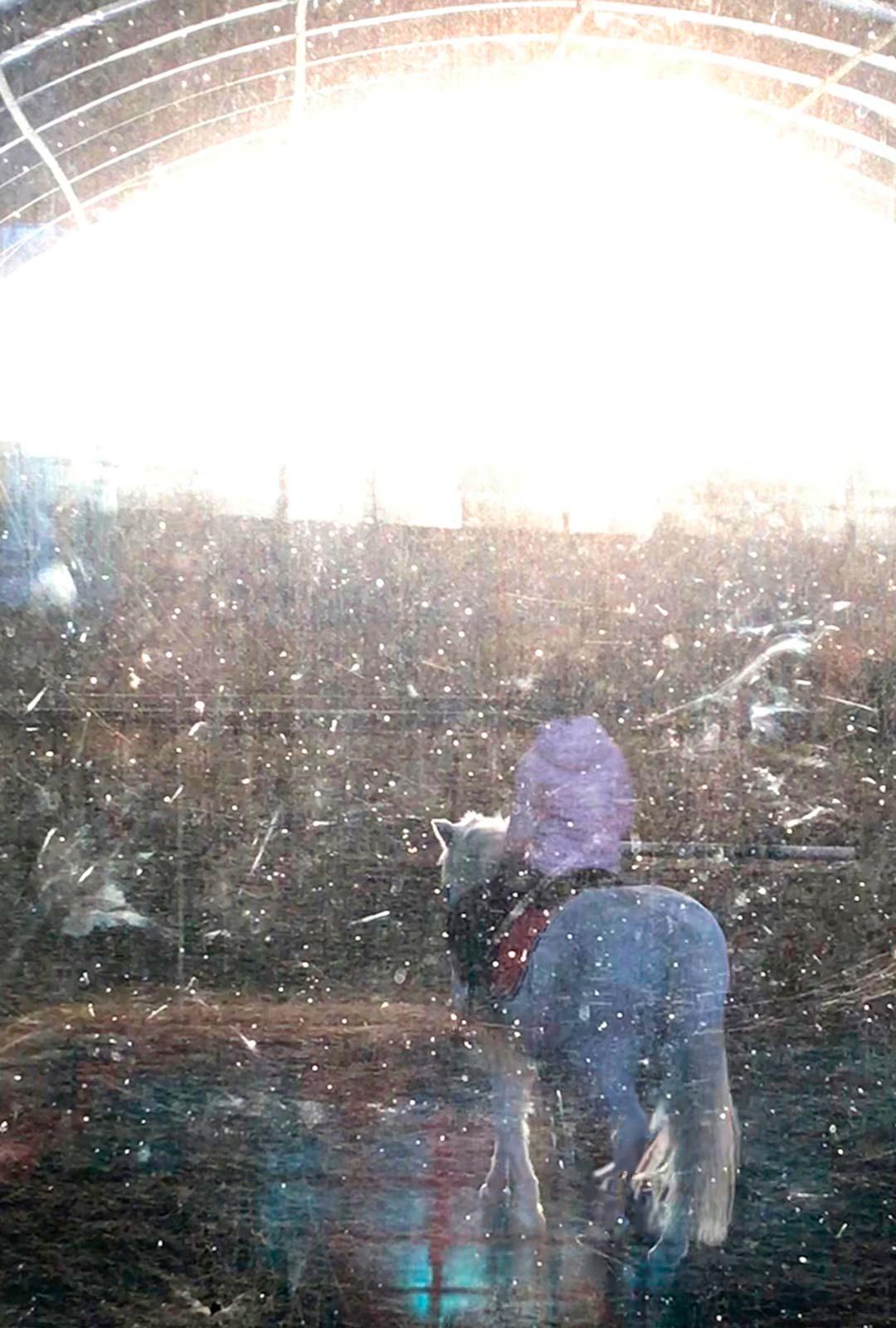 Johanna kuvaa tytärtään Loviisaa ratsastamassa. Taidekuva on otettu maneesin likaisen ikkunan läpi.