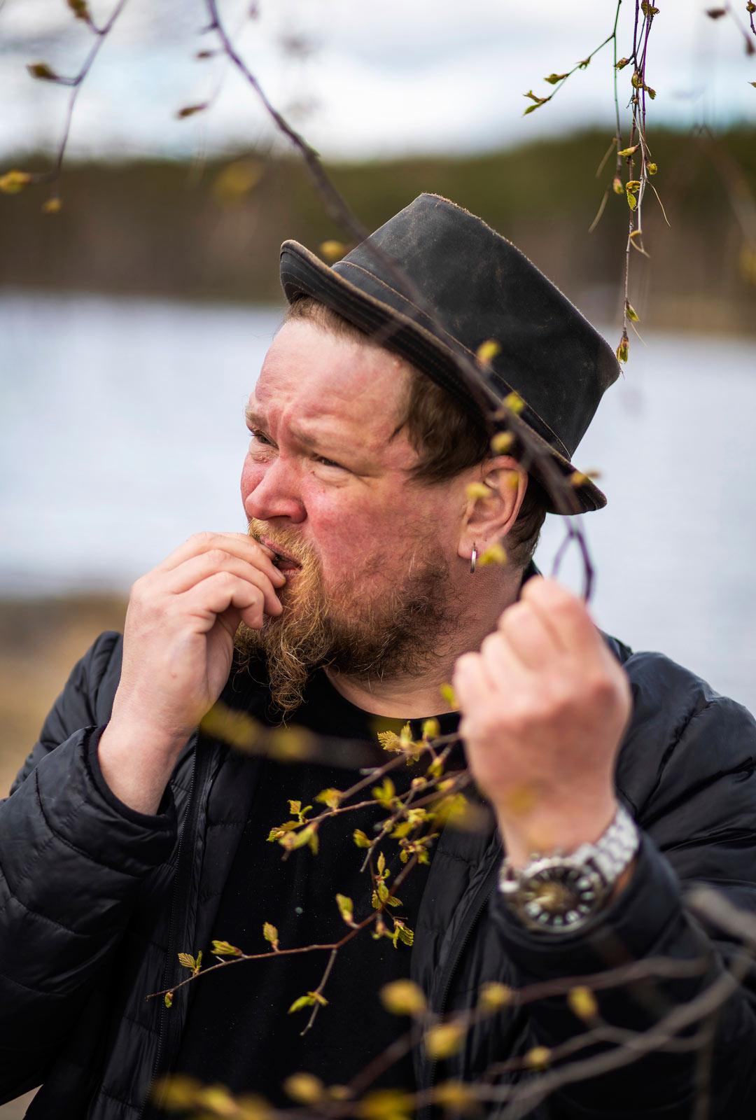 Mahlan lisäksi Ville Haapasalolle maistuvat myös koivun silmut. Nuoria koivunlehtiä hän käyttää yrttiteesekoituksiin.