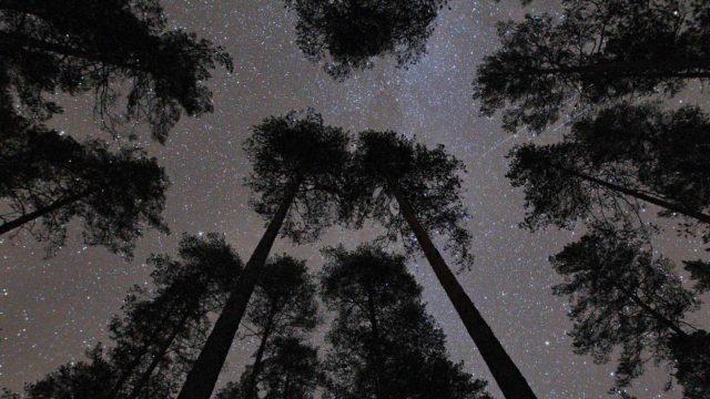 Yötaivaalla voi nähdä ainakin tähtiä, planeettoja ja satelliitteja.