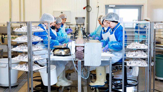 Lähes kaikki tehtaan työntekijät ovat naisia, vaikka varastossa työskentelee muutama mieskin.