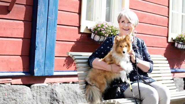 Shetlanninlammaskoira Miso kulkee Lea Lavenin mukana kaikkialle.