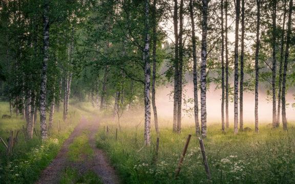 Kesäillan kauneus puhuttelee Mäntyharjulla.