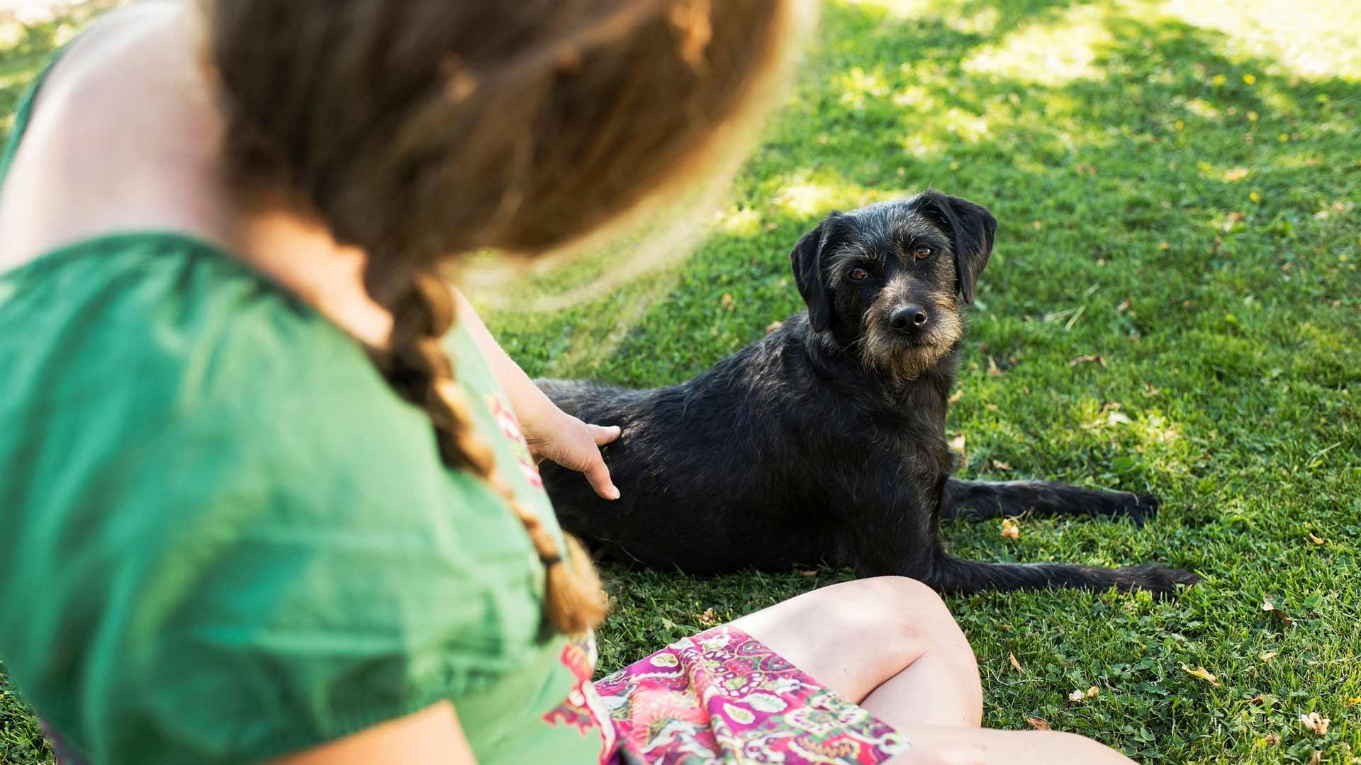 Fry-koiralla on kesäloma. Talvisin Maria lenkittää Fryn valoisaan aikaan, jotta ehtii nauttia päivänvalosta.