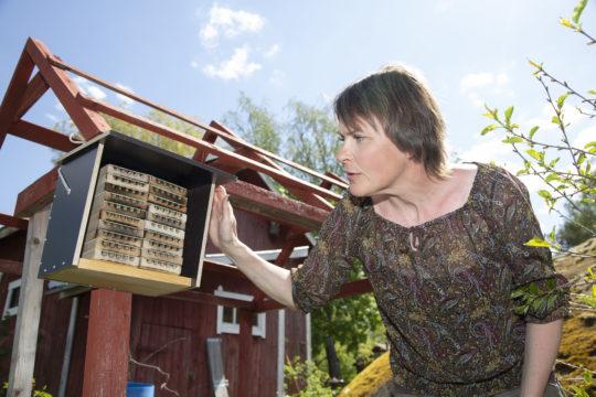 Kirjailija Reetta Niemelä esittelee rakentamaansa hyönteishotellia työhuoneensa pihalla Maskussa.