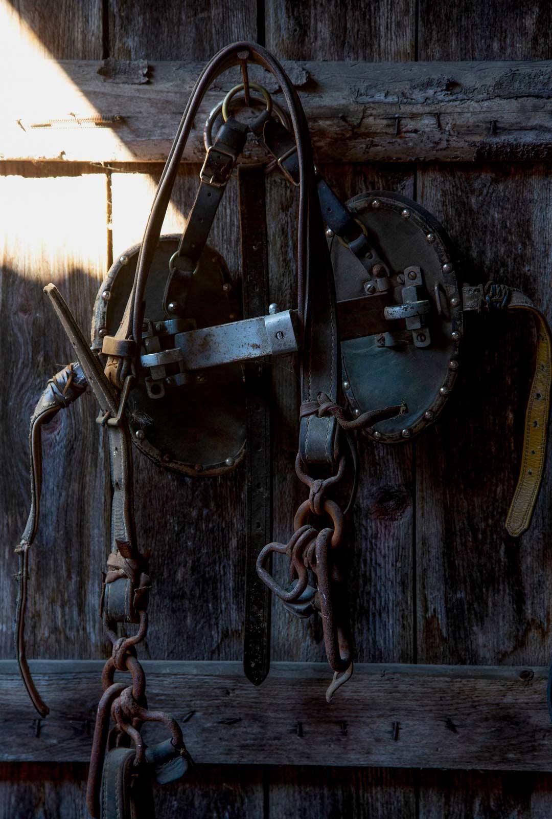 Länget on teetetty sopiviksi hevosille, ja niihin käytetään koivun juurta.